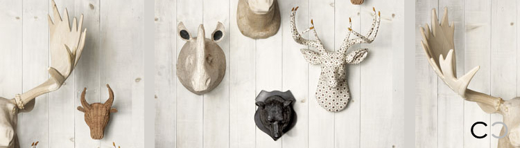 CCVO Design_taxidermia by J MuckleStudio D